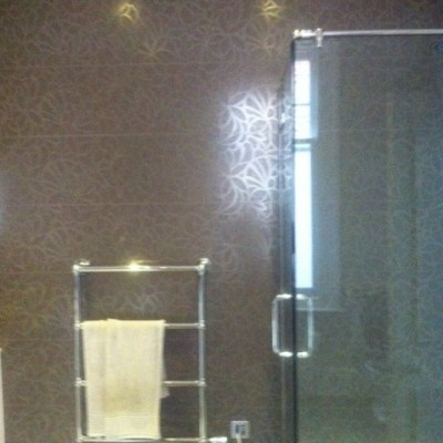 Glass Shower and Towel Rail